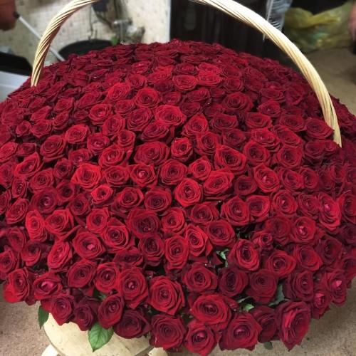 Купить на заказ 1001 роза с доставкой в Атбасаре