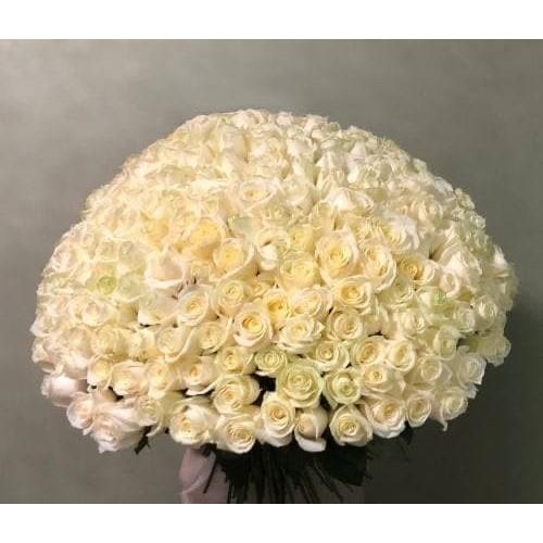 Купить на заказ 201 роза с доставкой в Атбасаре