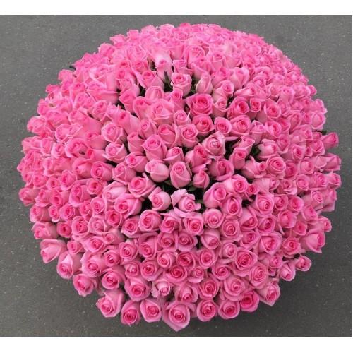 Купить на заказ 501  роза с доставкой в Атбасаре