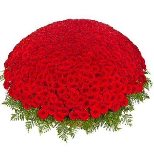 Купить на заказ 301  роза с доставкой в Атбасаре